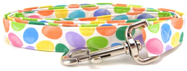 Colorful Easter Eggs on White Dog Leash