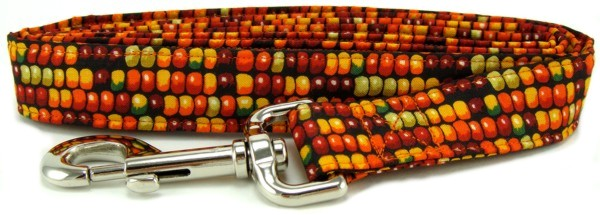 Indian corn dog leash